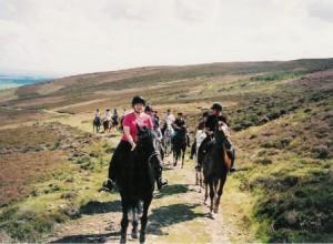 Fans Trail